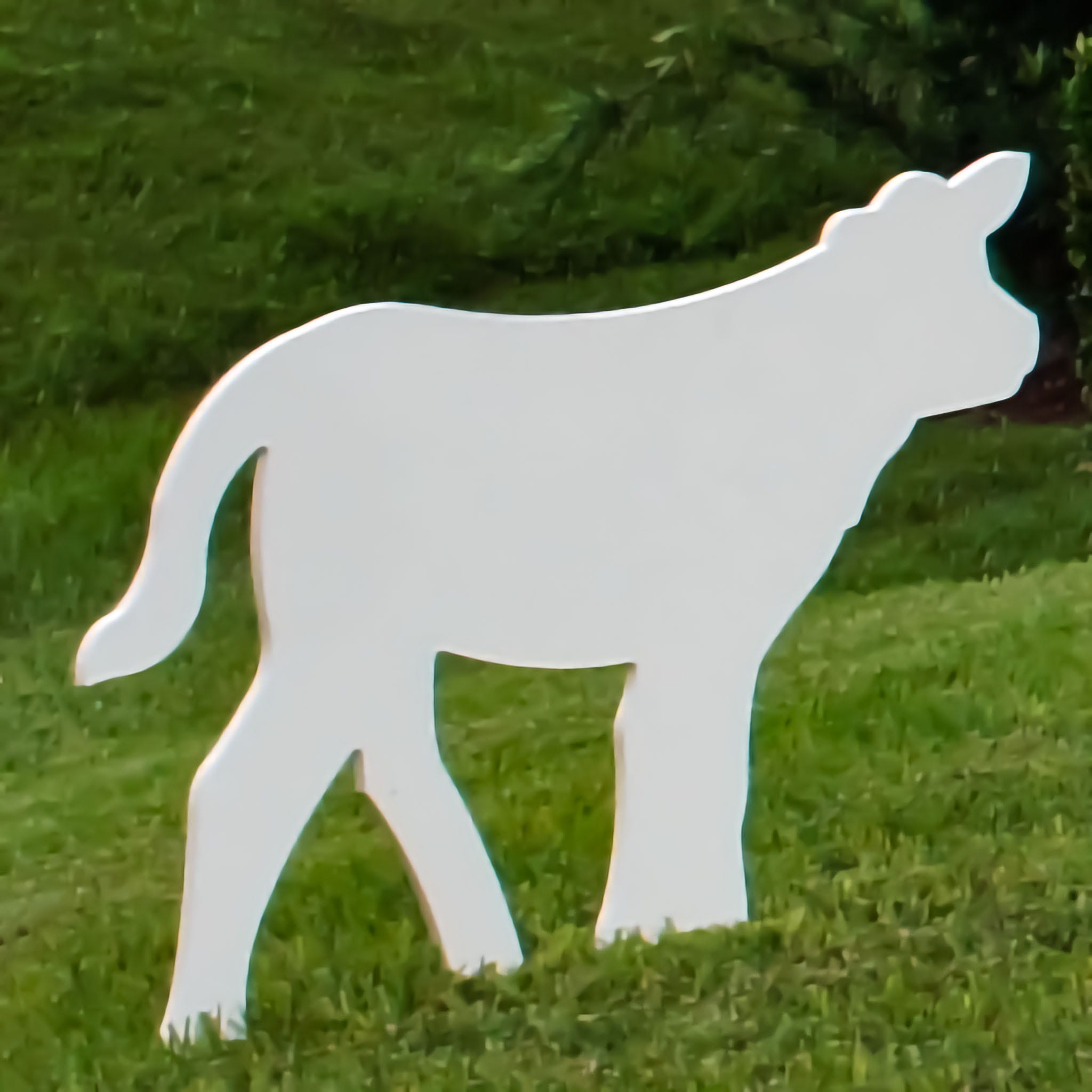 Calf Nativity Figure (Large)
